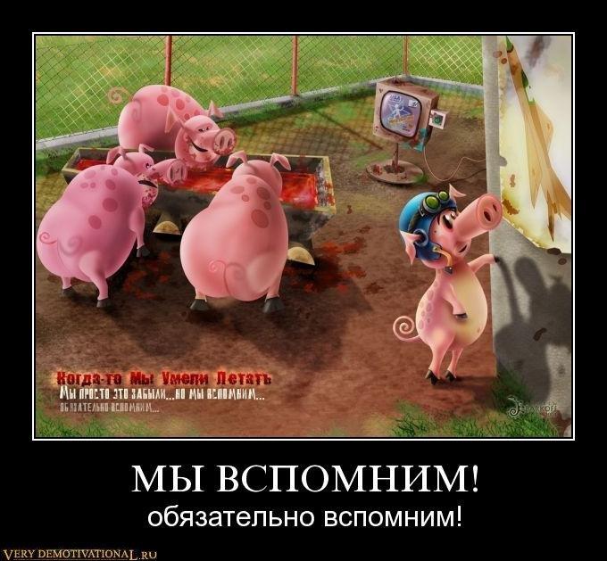 В оккупированном Россией Крыму массово нарушаются права человека, - Петренко - Цензор.НЕТ 2506