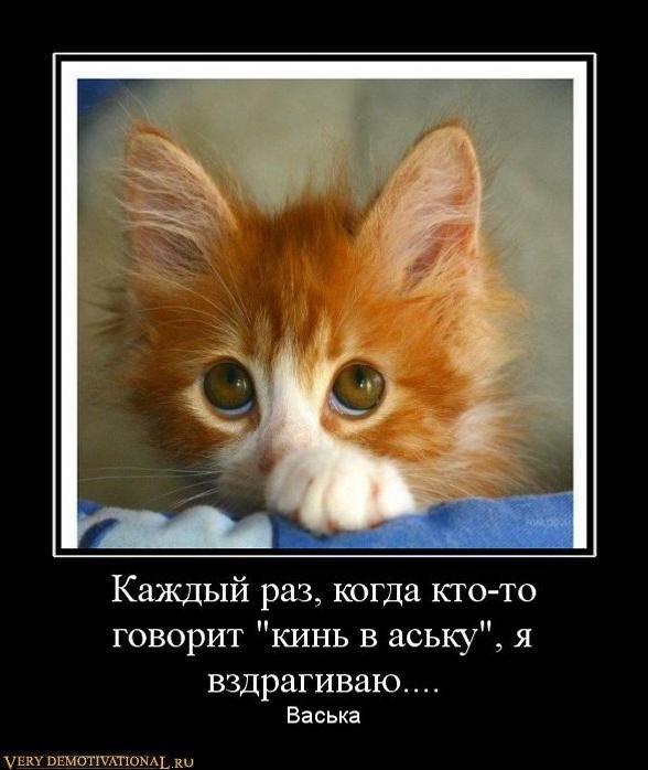 Смешные картинки и демотиваторы 1298545695_417780_kazhdyij-raz-kogda-kto-to-govorit-kin-v-asku-ya-vzdragivayu
