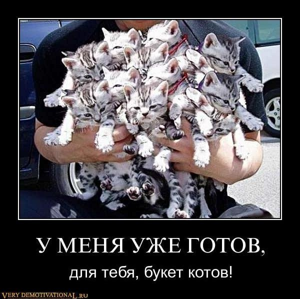 http://verydemotivational.ru/uploads/posts/2011-12/1323902067_a01cvmzctj2d.jpg